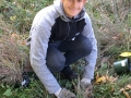 Volunteer Michael Cherkasky plants grasses in Nan's Meadow
