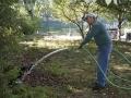 Planting in formal garden 9-24-16