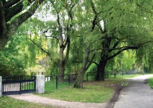 Hall's Pond