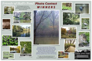 Photo Contest Poster May 2011