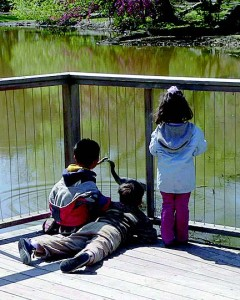 Students marvel at the Great Blue Heron.  Photo Credit: Bruce Wolff